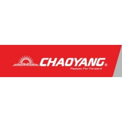 Chaoyang Tyre and Tube Kit 26